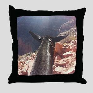 South Kiabab Grand Canyon Mule Ride Throw Pillow