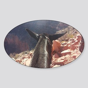 South Kiabab Grand Canyon Mule Ride Sticker (Oval)