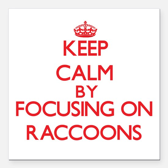 Keep calm by focusing on Raccoons Square Car Magne