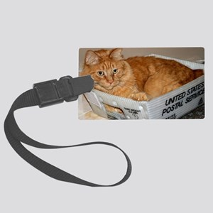 Mail Cat Large Luggage Tag