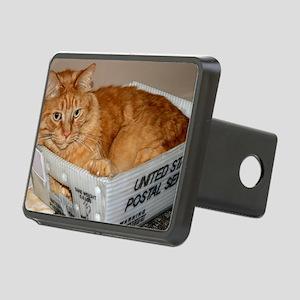 Mail Cat Rectangular Hitch Cover