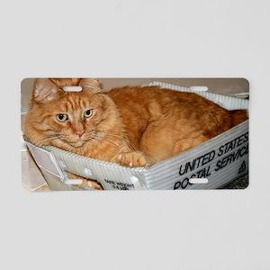 Mail Cat Aluminum License Plate