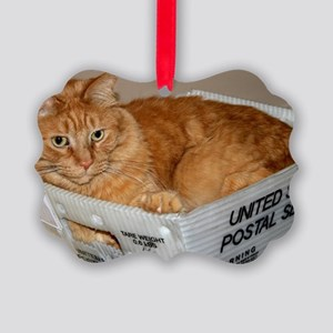 Mail Cat Picture Ornament