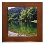 Fish Pond Framed Tile
