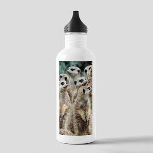 Meerkat066 Stainless Water Bottle 1.0L