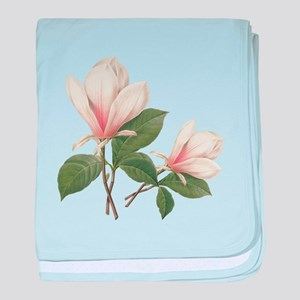 Vintage botanical art, elegant magnolia flower. ba