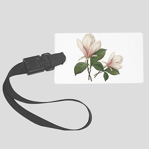 Vintage botanical art, elegant magnolia flower. La