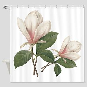 Vintage botanical art, elegant magnolia flower. Sh