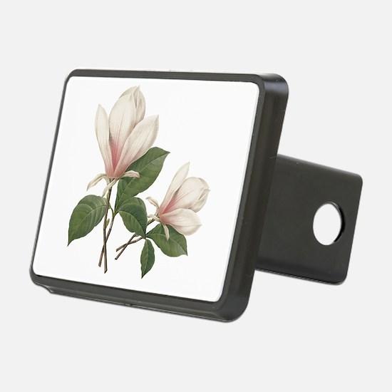 Vintage botanical art, elegant magnolia flower. Re