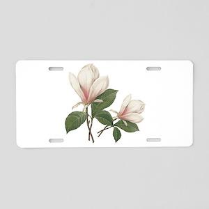 Vintage botanical art, elegant magnolia flower. Al