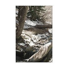 Alpine Stream Sepia Toned Posters
