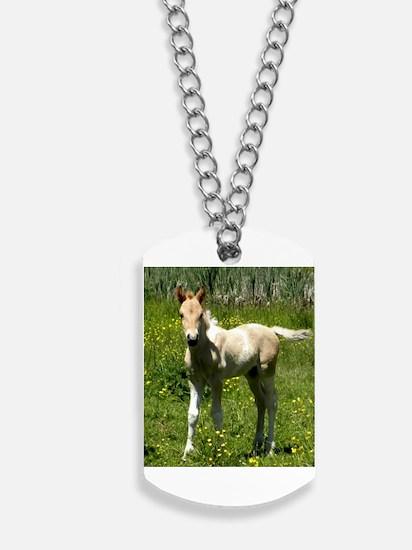 Cinnamon Chai Foal Dog Tags