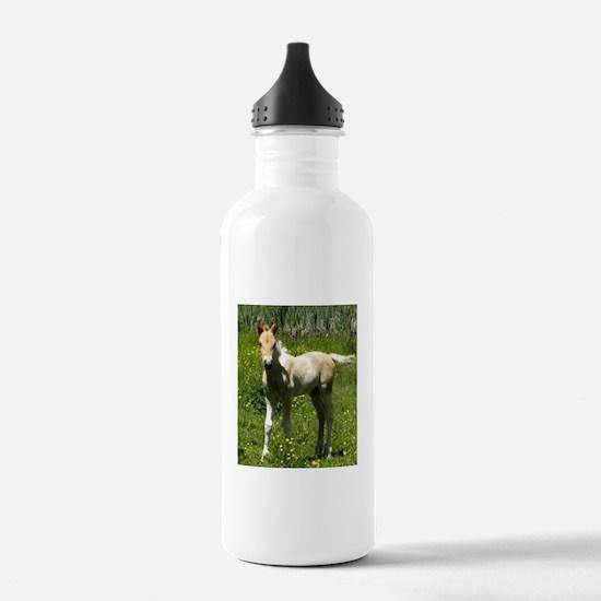 Cinnamon Chai Foal Water Bottle