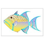 Queen Triggerfish Posters