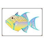 Queen Triggerfish Banner