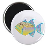 Queen Triggerfish Magnets