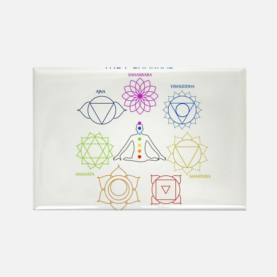 The seven chakras with their respective co Magnets