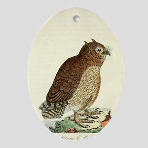 Hutum Owl Oval Ornament