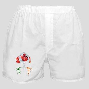 Canada Irish Roots Boxer Shorts