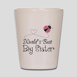 Worlds Best Big Sister Shot Glass