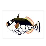 Clown Triggerfish Postcards (Package of 8)