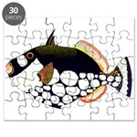 Clown Triggerfish Puzzle