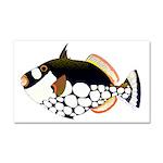 Clown Triggerfish Car Magnet 20 x 12