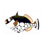 Clown Triggerfish Wall Decal
