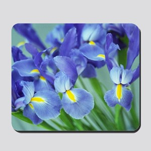 Spring Purple Irises Photo Mousepad