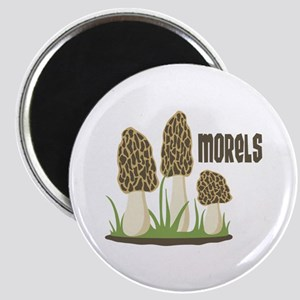 MORELS Magnets