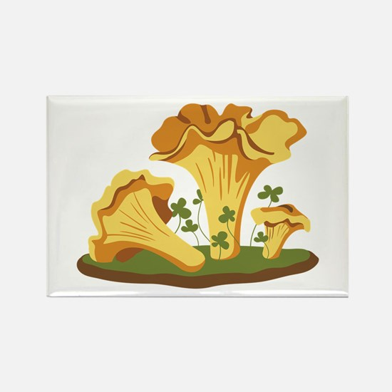 Chanterelle Mushrooms Magnets