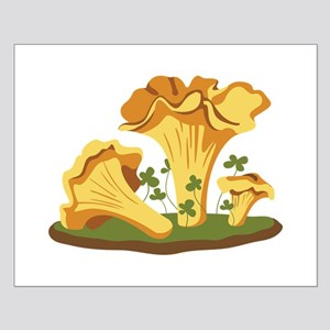 Chanterelle Mushrooms Posters