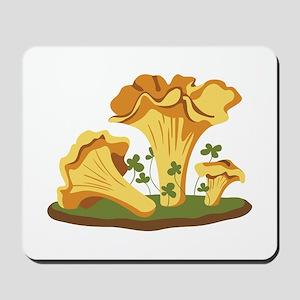 Chanterelle Mushrooms Mousepad
