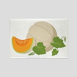 Cantaloupe Vine Magnets