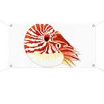 Chambered Nautilus Banner