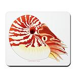 Chambered Nautilus Mousepad