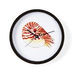 Chambered Nautilus Wall Clock