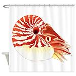 Chambered Nautilus Shower Curtain