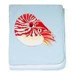 Chambered Nautilus c baby blanket