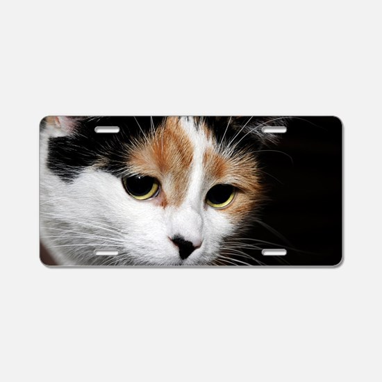 Calico Cat Chiara Aluminum License Plate