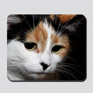 Calico Cat Chiara Mousepad