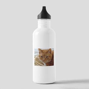 Orange Cat Water Bottle