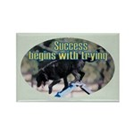 Success Begins With Trying Rectangle Magnet (100 p