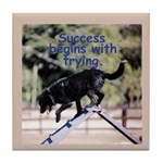 Success Begins With Trying Tile Coaster