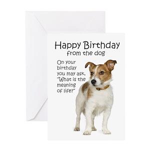 Funny Dog Birthday Sayings Greeting Cards