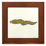 Jewel Moray Eel Framed Tile