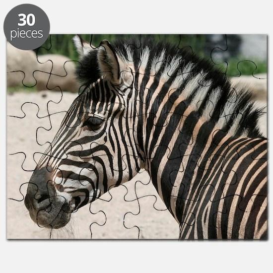 Zebra021 Puzzle