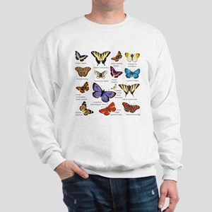 Butterfly Illustrations full colored Sweatshirt