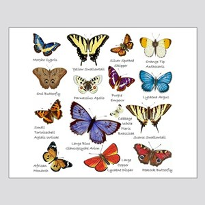 Butterfly Illustrations full colored Posters
