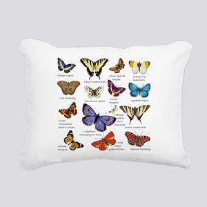 Butterfly Illustrations full colored Rectangular C